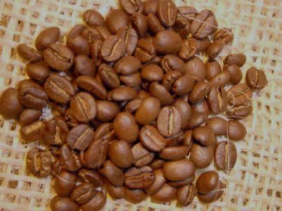 ホンジュラスの珈琲豆