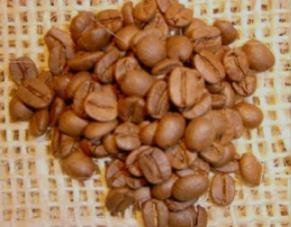 ブラジルサントスコーヒー豆